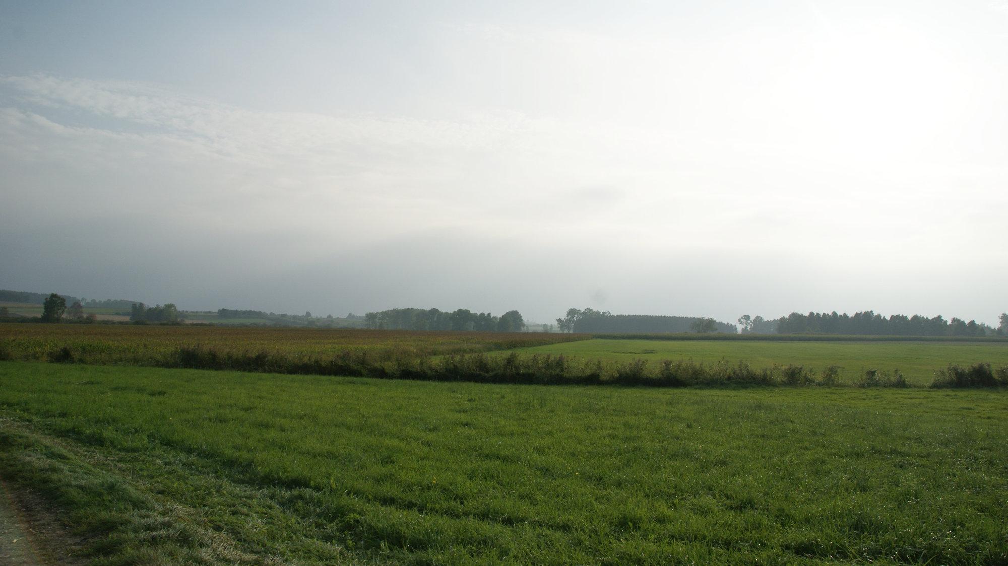 Dattenhausener Ried
